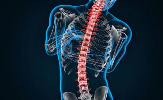 Magnetna rezonanca(MR) je moderna, vrhunska dijagnostička metoda koja omogućava uvid u strukture unutar lobanje, kičmenog stuba,..