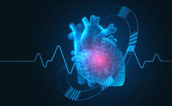 Angina pectoris (stabilna i nestabilna), kao i infarkt srčanog mišića su stadijumi koronarne bolesti koja je uzrokovana suženjem koronarnih arterija (koje krvlju snabdevaju srčani mišić).