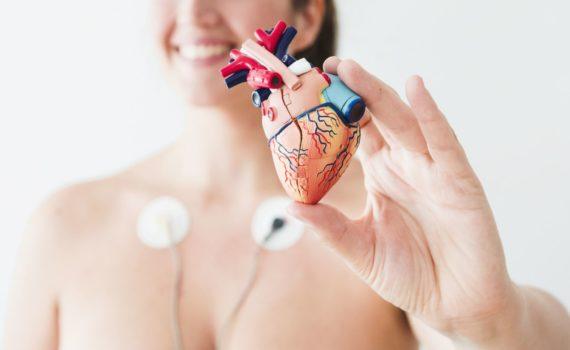 Kardiološki pregled je bezbolan, nije potrebna nikakva priprema, ne koriste se nikakvi invazivni instrumenti (uobičajeno se koristi stetoskop, tenziometar, EKG aparat). Traje prosečno oko 20-30 minuta a po potrebi i duže.