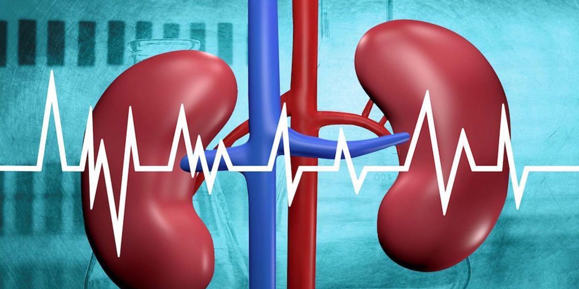 Kamen u bubregu je pojava čvrste, solidne tvorevine u kanalnom sistemu bubrega, koja može izazvati zastoj u mokraćnim putevima na različitim nivoima.