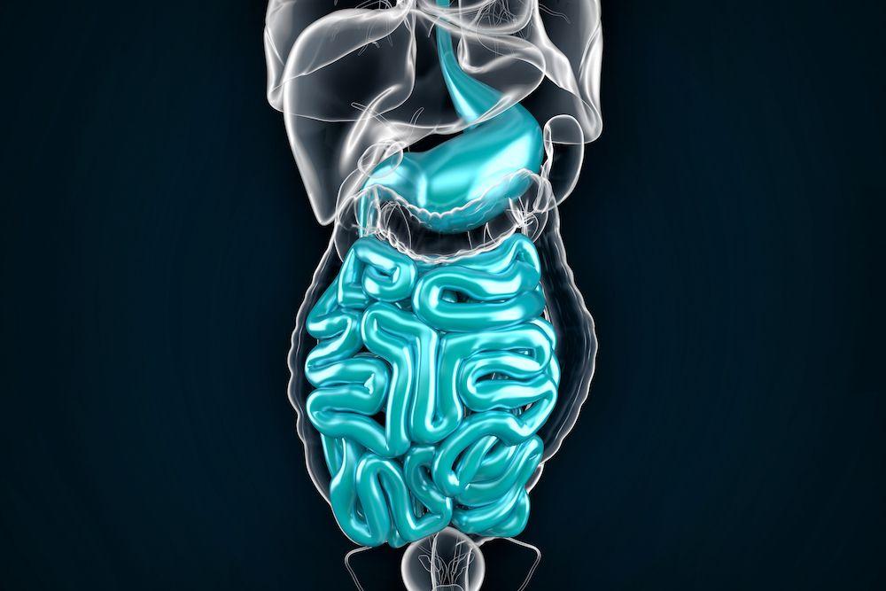 Hemoridi su arterijsko-venski jastučići završnog dela debelog creva koji postaju patološki prošireni krvni sudovi kada oteknu I upale se. Hemoroidi mogu biti spoljašnji i unutrašnji.
